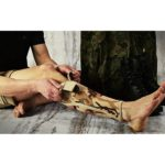 anatomichnyj-ortez-goleni-reh4mat-4army-pu-01-666978995-1000x1000